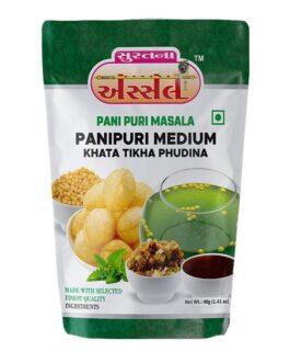 Medium Tikha Pudina Paanipuri Masala